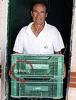 The crates of quail are taken to launcher